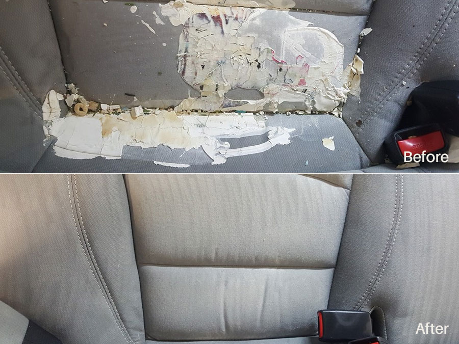 Latex Paint Removal